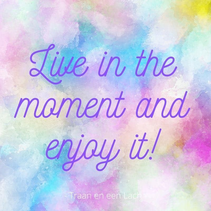 Quote - Live in the moment and enjoy it - Traan en een Lach