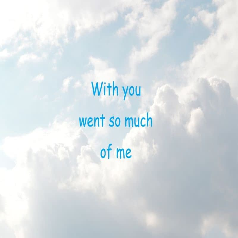 Quote - With you went so much of me - Traan en een Lach