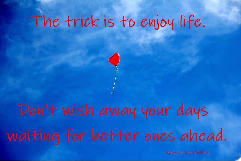 Quote - The trick is to enjoy life. Don't wish away your days waiting for better ones ahead - Traan en een Lach