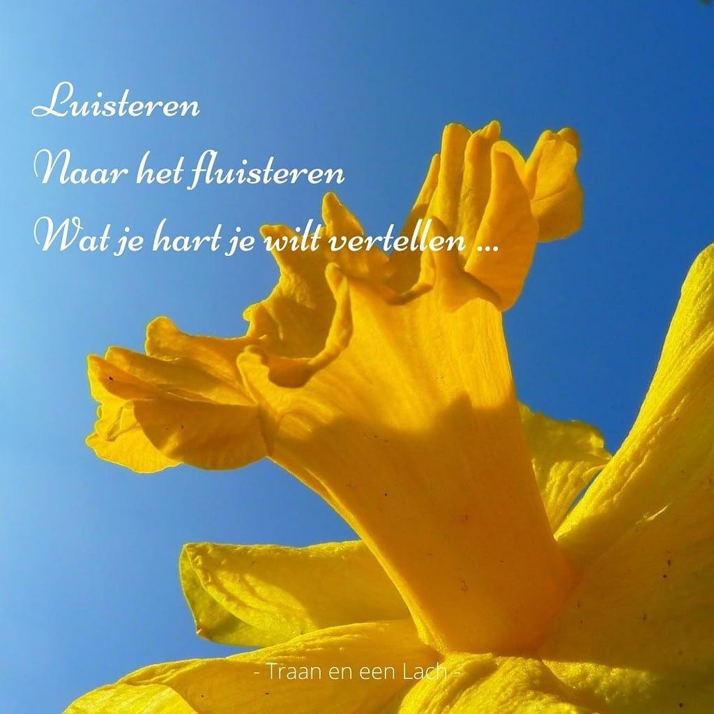 Quote - Luisteren naar het fluisteren wat je hart je wilt vertellen - Traan en een Lach