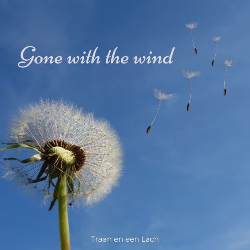 Quote - Gone with the wind - Traan en een Lach