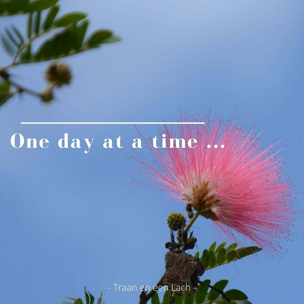 Quote - One day at a time - Traan en een Lach