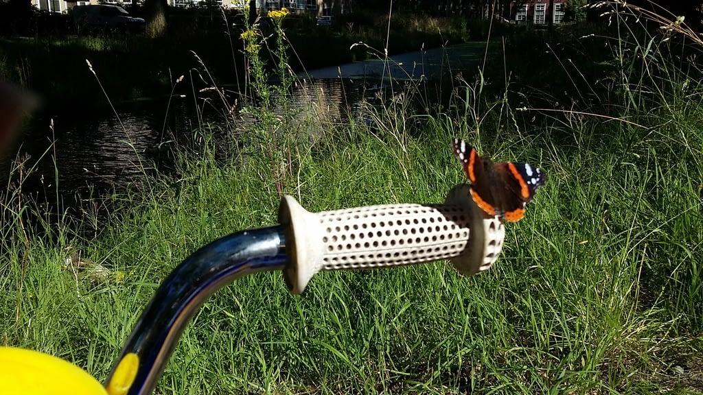 Een vlinder landt op het handvat van kinderfietsje - Traan en een Lach